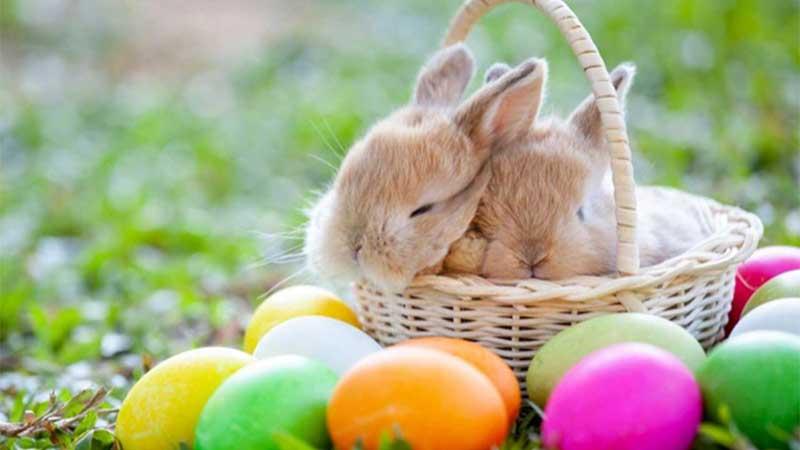 Húsvéti pihenés a Mátraalján