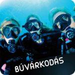 Buvarkodas-600x600w