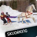 Skijorking