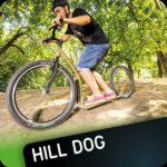 Hill dog